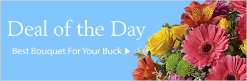 Send flowers to Bel Air, MD with Richardson's Flowers & Gifts, your local Bel Air florist