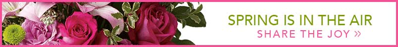 Send flowers to Waltham, MA with Waltham's Florist, your local Waltham florist
