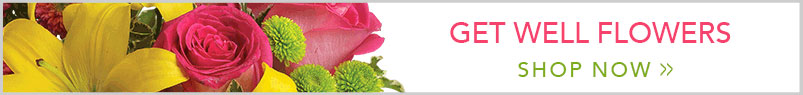 Send Flowers to Cambridge, MA with Blossom Floral Design, your local Cambridge florist