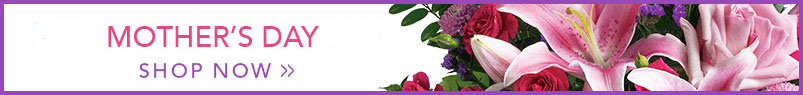 Send flowers to Dearborn Heights, MI with English Gardens, your local Dearborn Heights florist