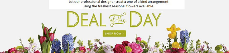 Send Flowers to East Amherst, NY with American Beauty Florists, your local East Amherst florist