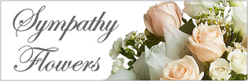 Send flowers to Portland, OR with City Flowers Tommy Luke, your local Portland florist