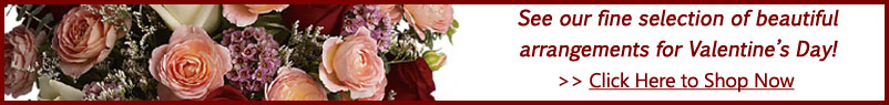 Send flowers to Bellevue, PA with Fred Dietz Floral, your local Bellevue florist