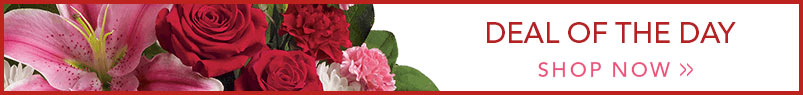 Send flowers to Fond Du Lac, WI with Haentze Floral Co, your local Fond Du Lac florist