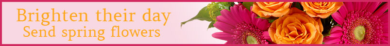 Send Valentine�s Day flowers to Madison, WI with Felly's Flowers, your local florists