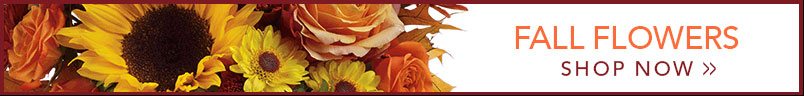 Send Flowers to Madison, WI with Felly's Flowers, your local Madison florist