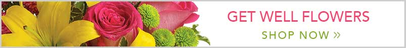 Send Flowers to Carmichael, CA with Bettay's Flowers, your local Carmichael florist