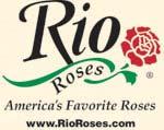 www.rioroses.com