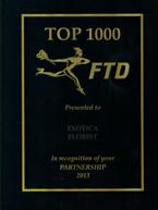 FTD Partner