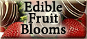 Edible Fruit Blooms from Timmins Flower Shop